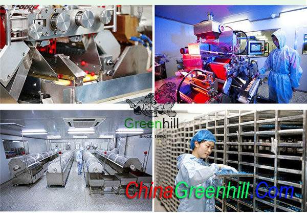 China Paintball Production